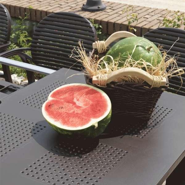 Table de jardin avec allonge polypropylène anthracite - Levante - 10