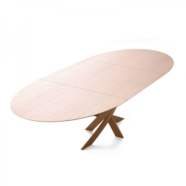 Table ovale design avec allonges made in France - Elliptica - 2
