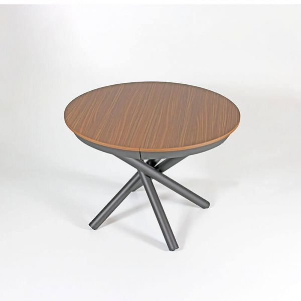 Table design ronde avec rallonge  - 1